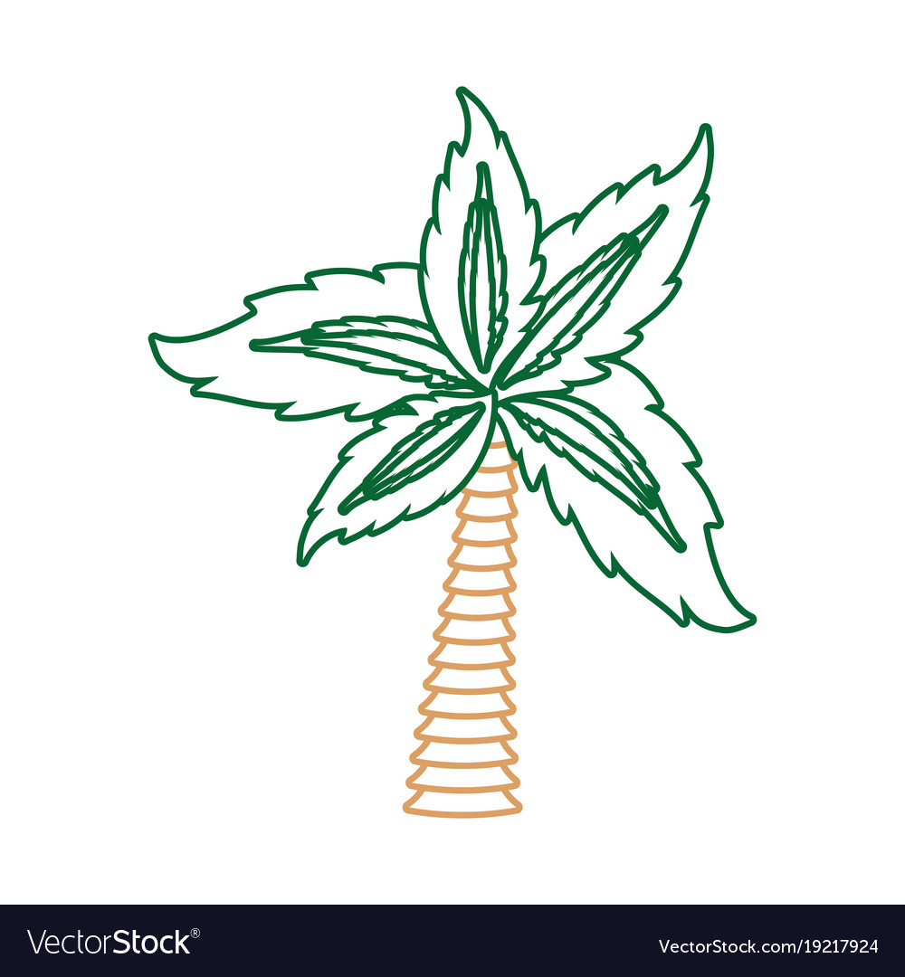 Palm Tree Symbol Neon Lines Royalty Free Vector Image