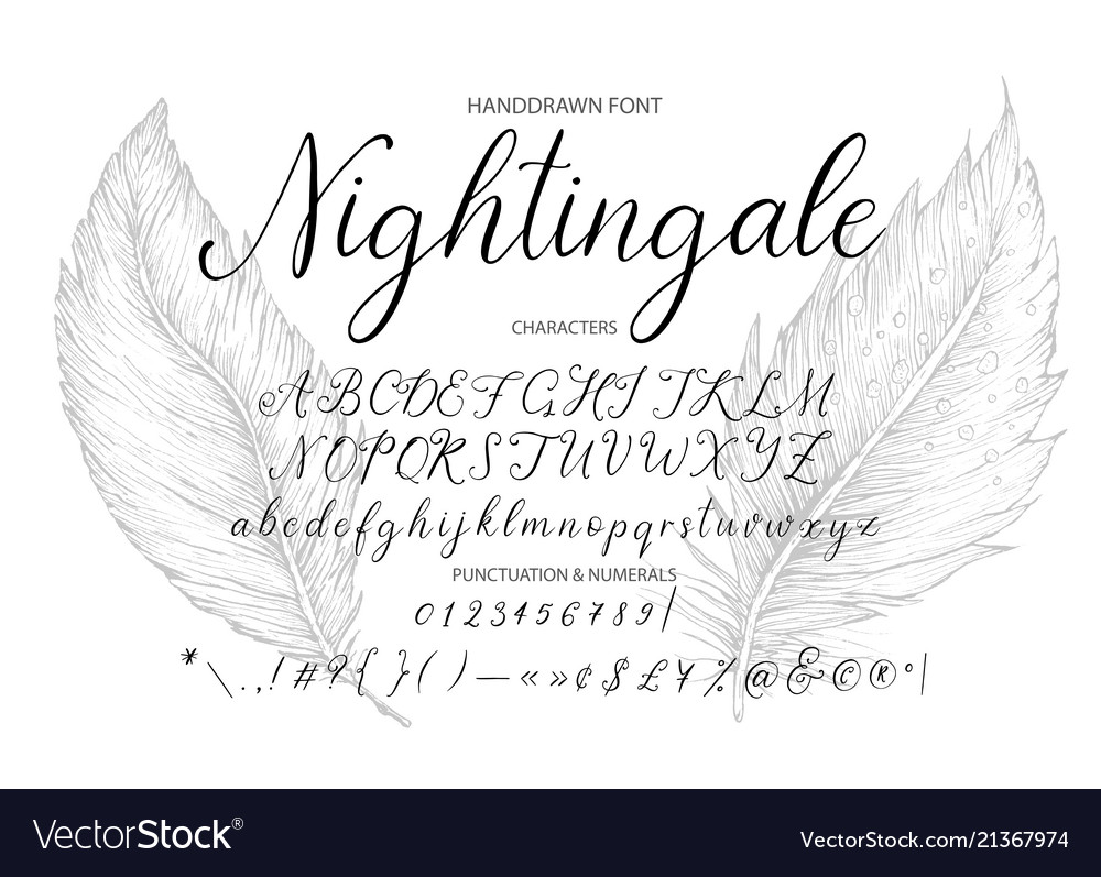 Nightingale handdrawn calligraphic font