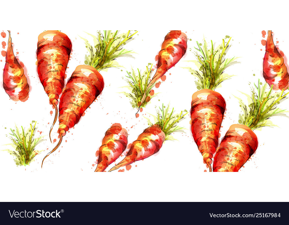 Carrots pattern watercolor fresh spring