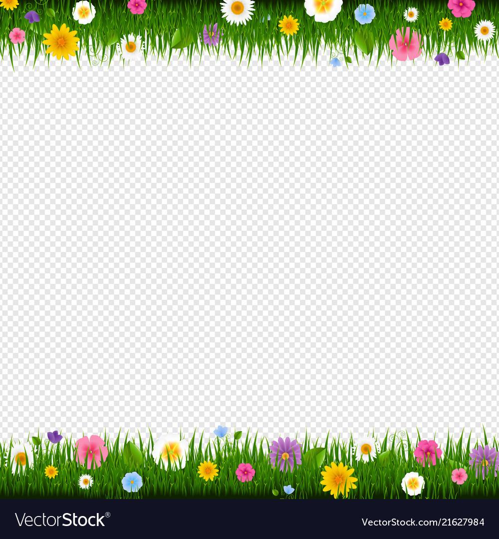 Flowers Vector Transparent Background