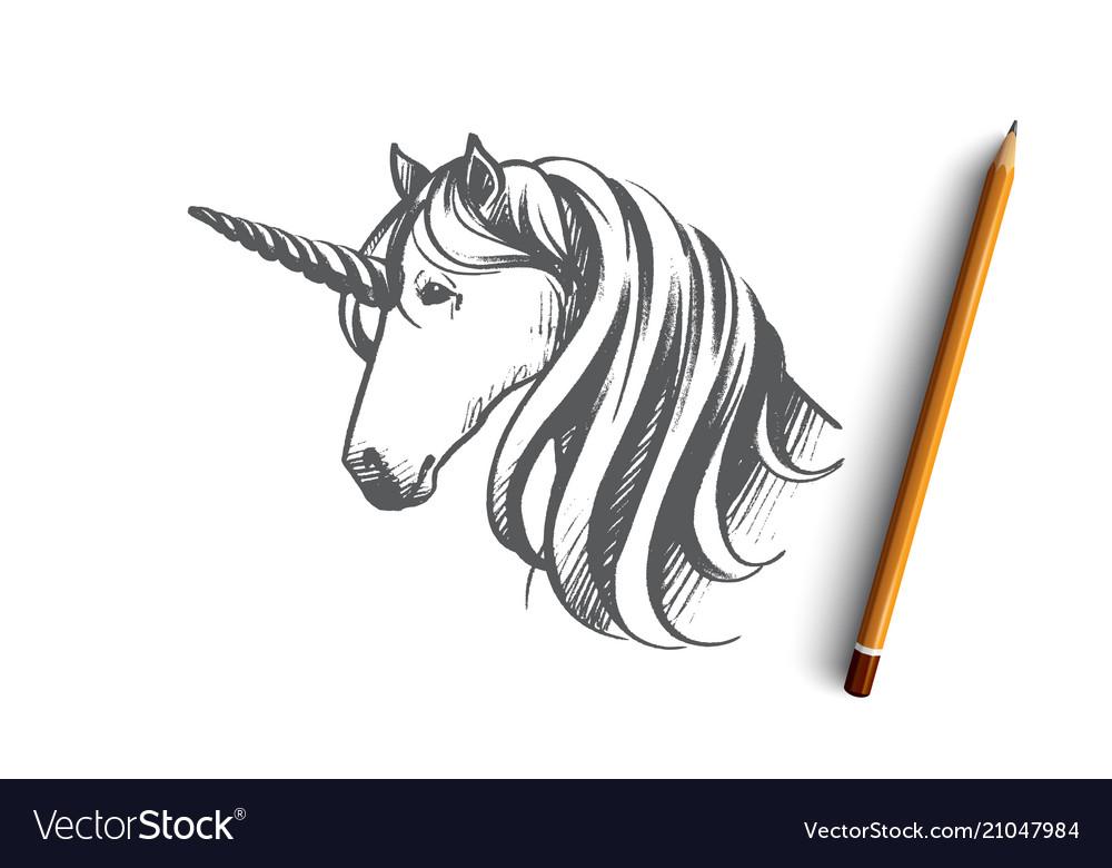 Unicorn concept hand drawn isolated