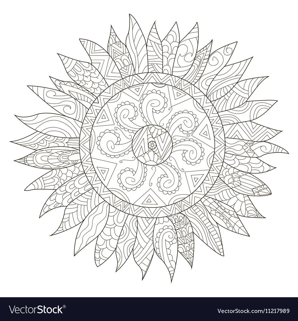 Mandala flower sunflower coloring for vector image