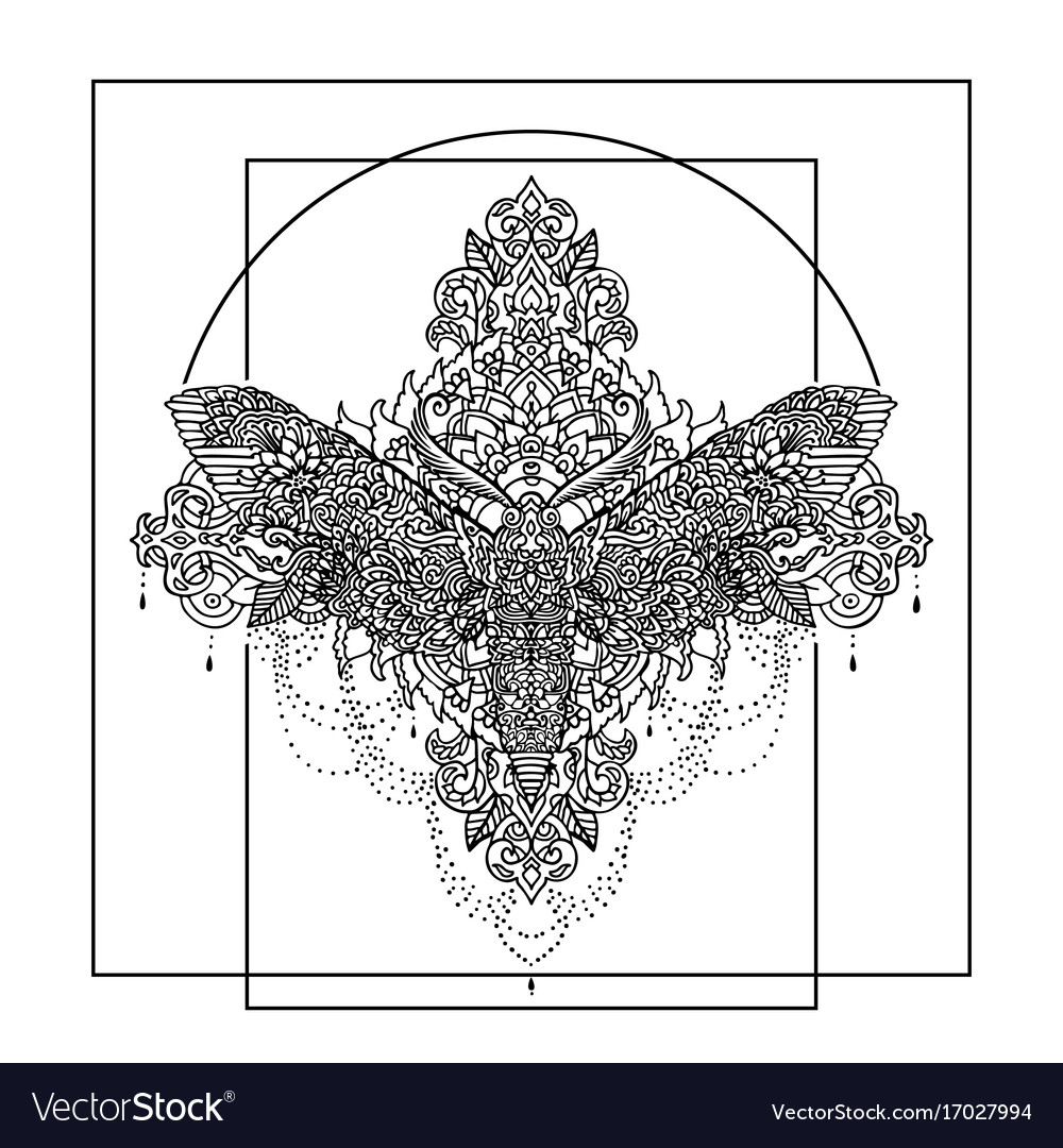 Night butterfly adult coloring book Royalty Free Vector