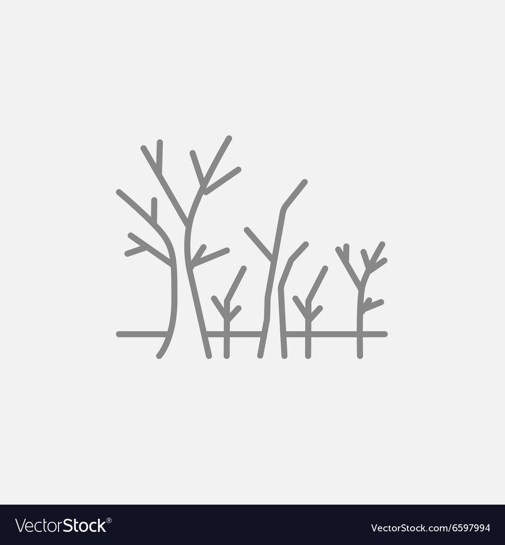 Tree with bare branches line icon