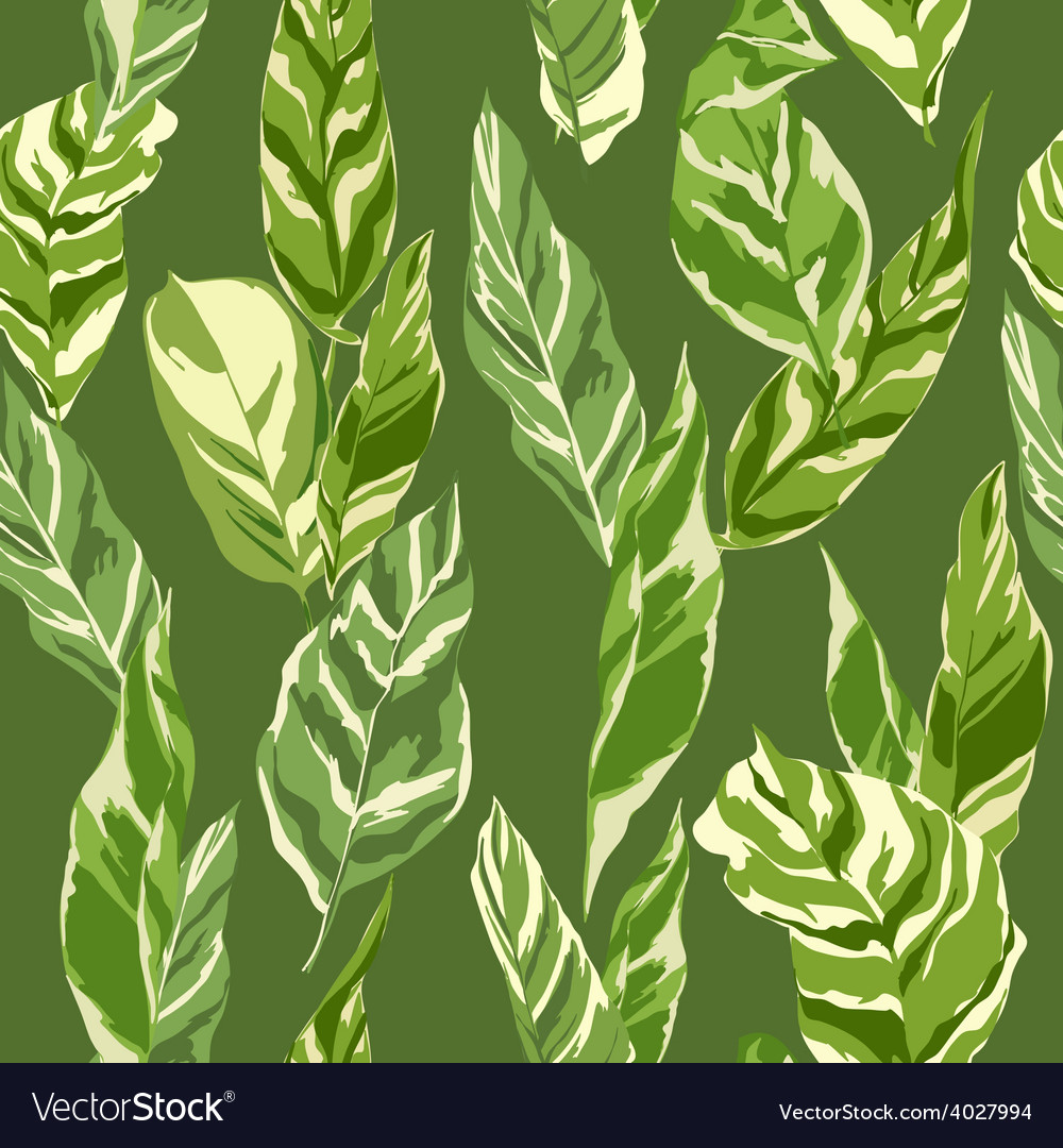 Tropical Leaves Background Royalty Free Vector Image The set of high quality hand painted watercolor tropical leaves and elements images in bright and fresh color palette. tropical leaves background royalty free vector image