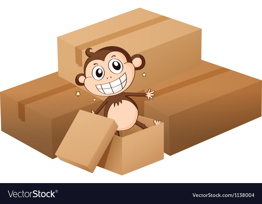 A monkey and boxes