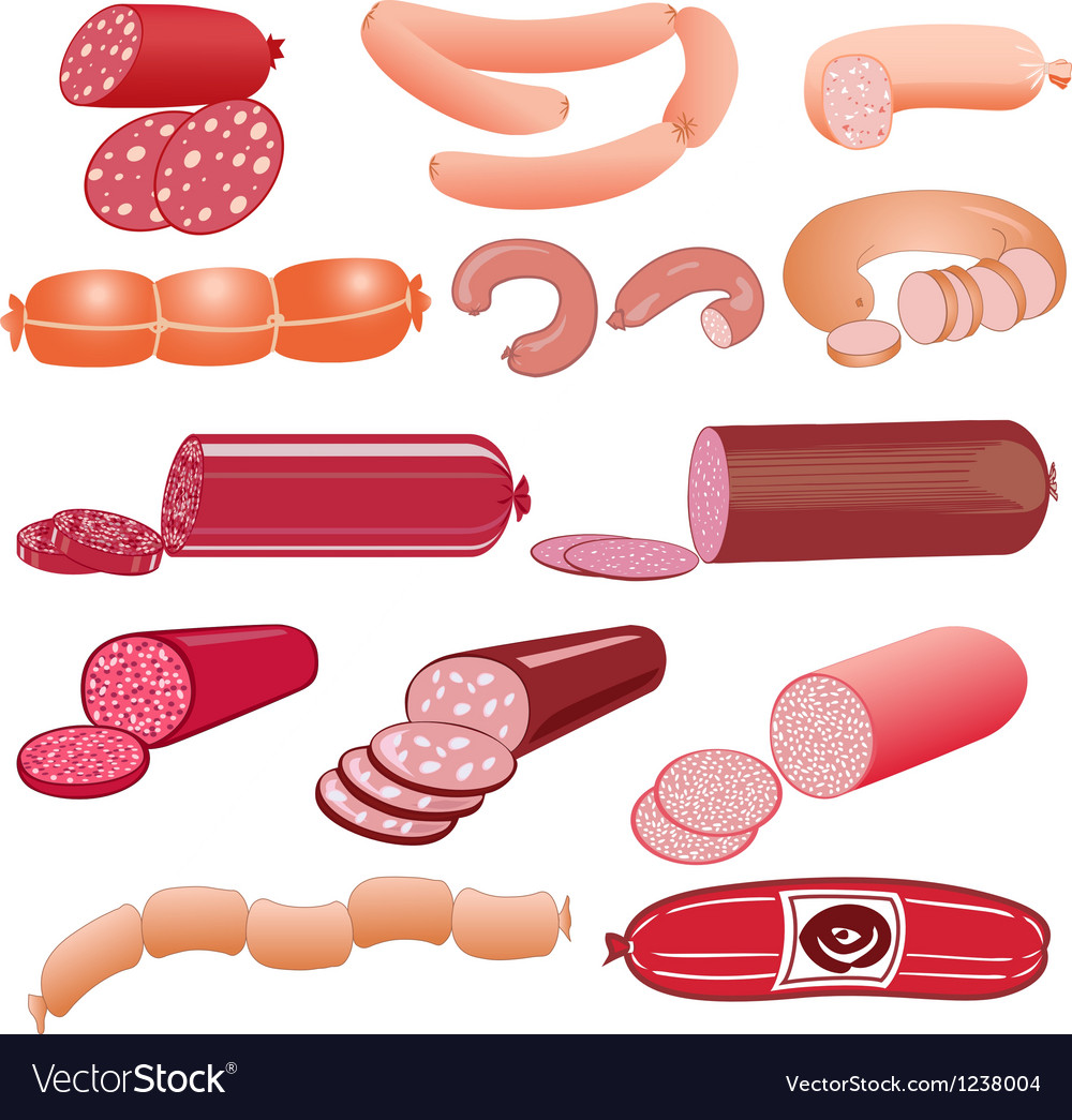 Set of sausage on a white background vector image
