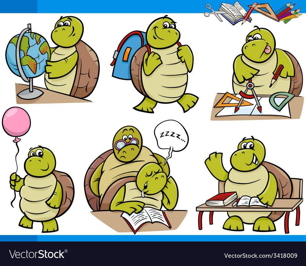 Turtle character student cartoon set vector image
