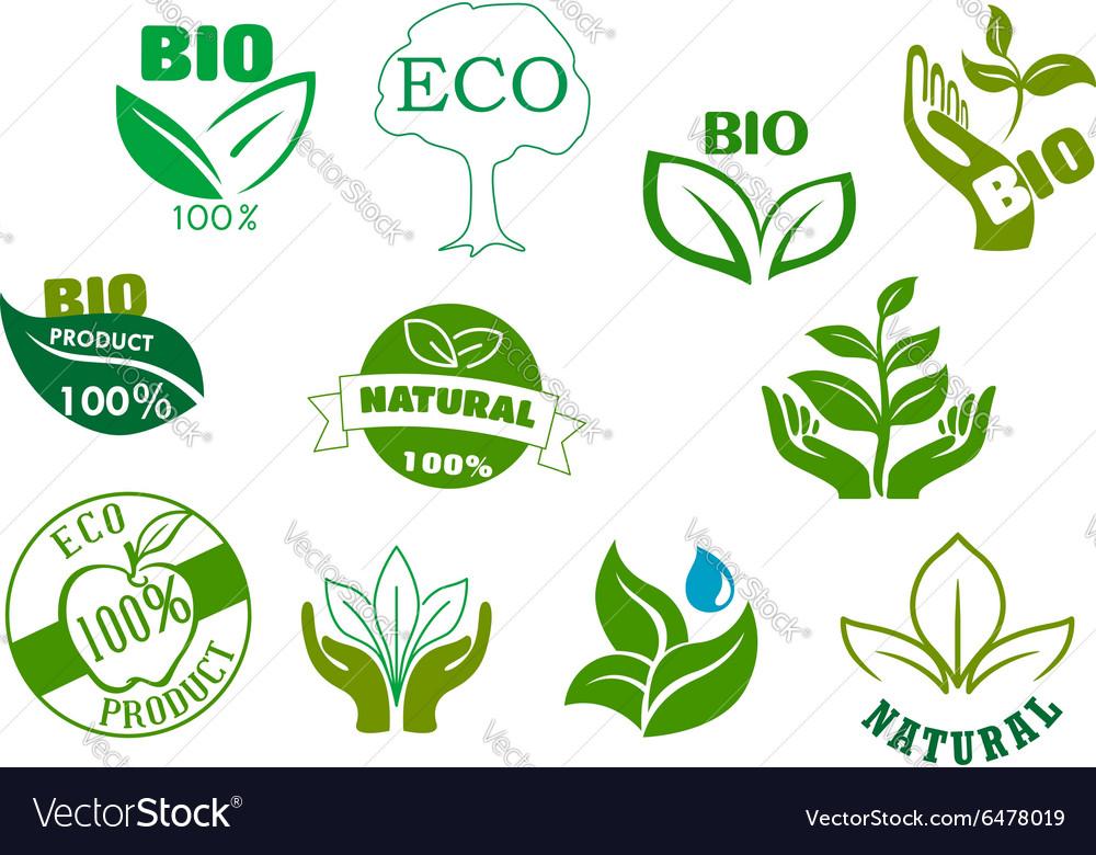 Bio eco and natural products green symbols vector image