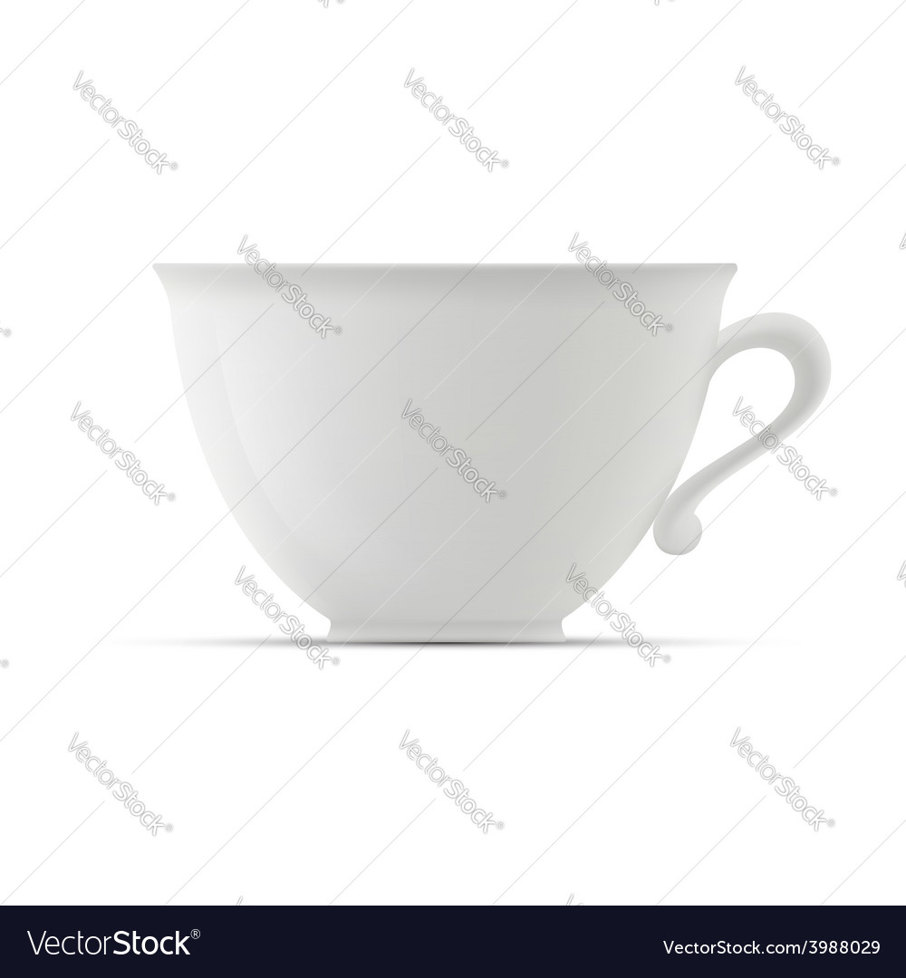 Cup on white background vector image