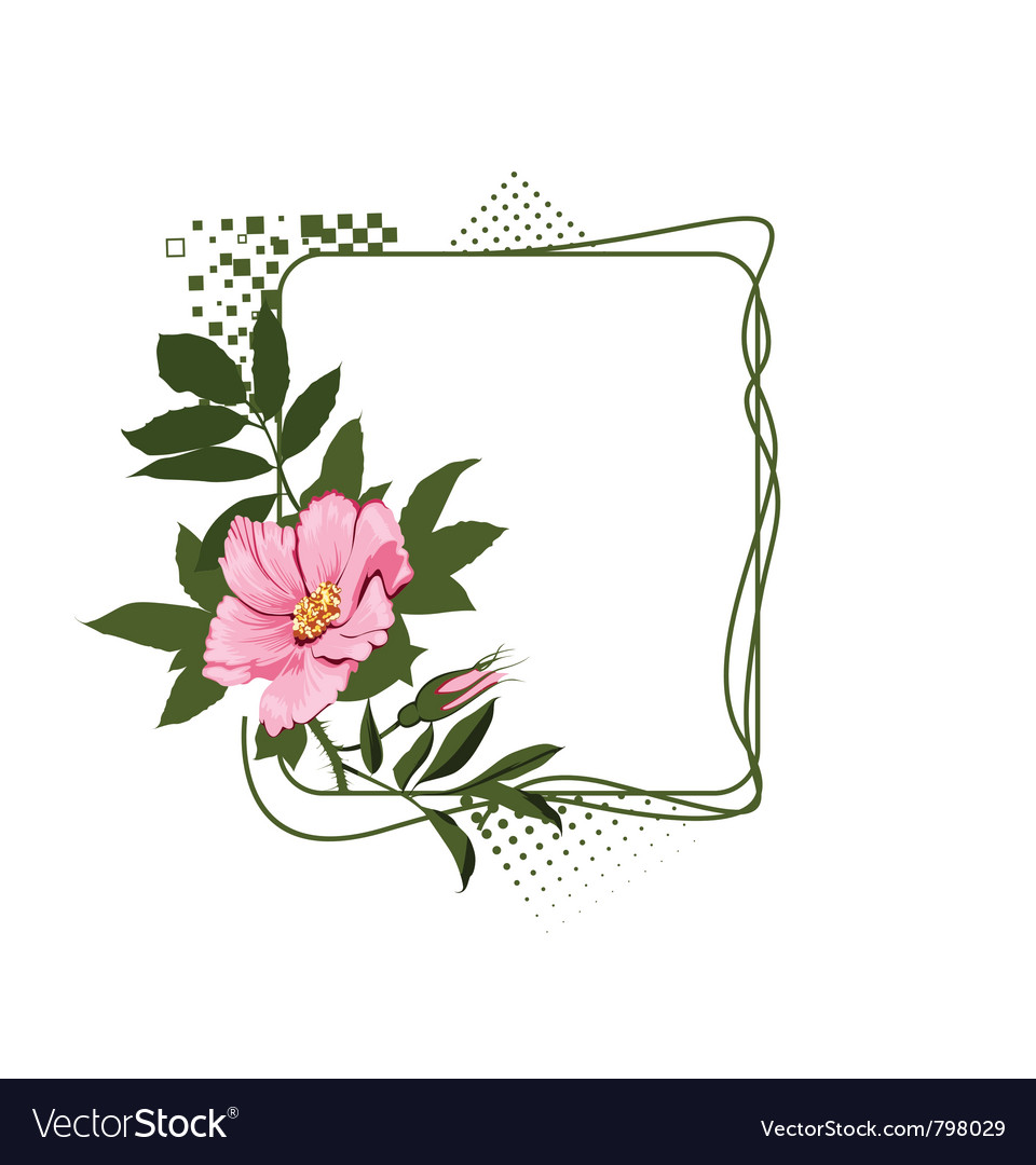 Green frame with the wild pink roses