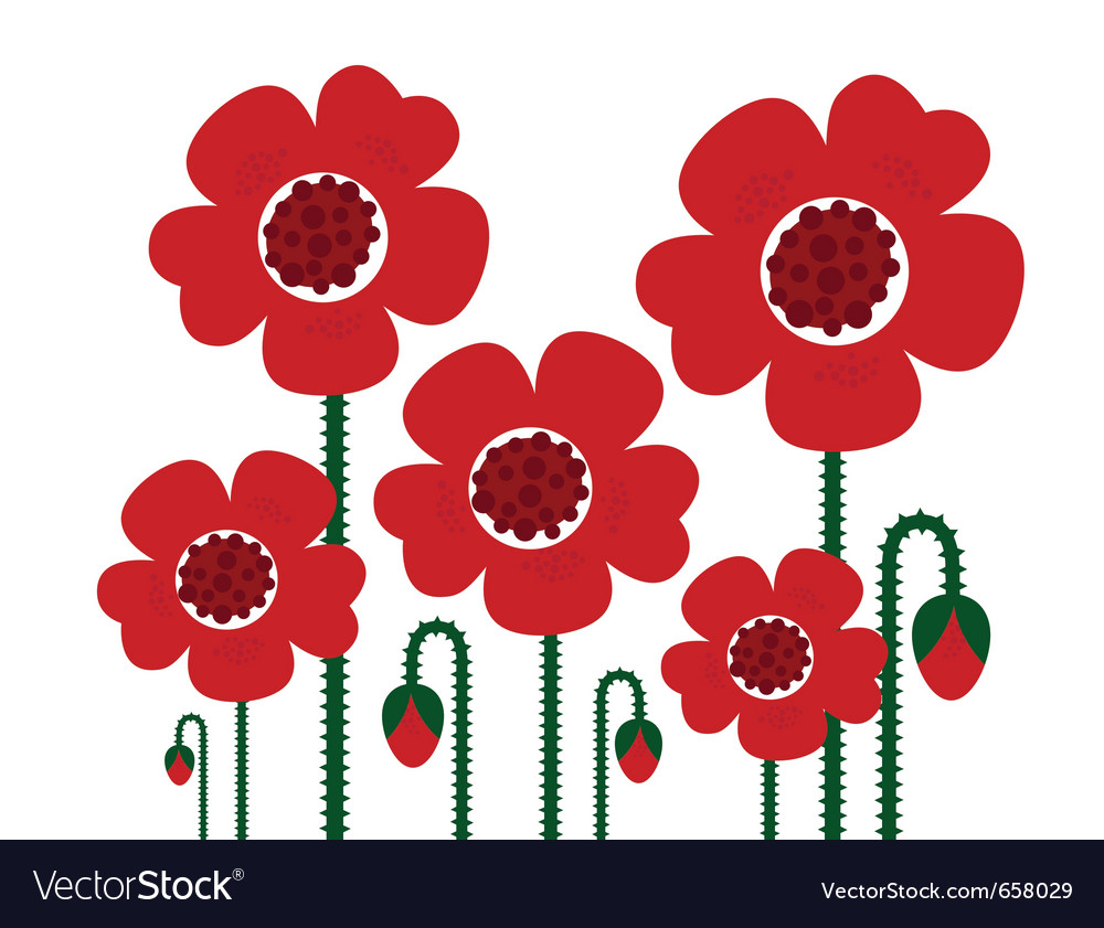 Red Poppy Flowers Isolated On White Retro Vector Image