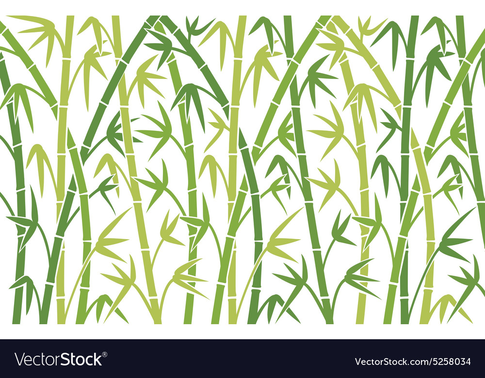 bamboo background royalty free vector image vectorstock vectorstock