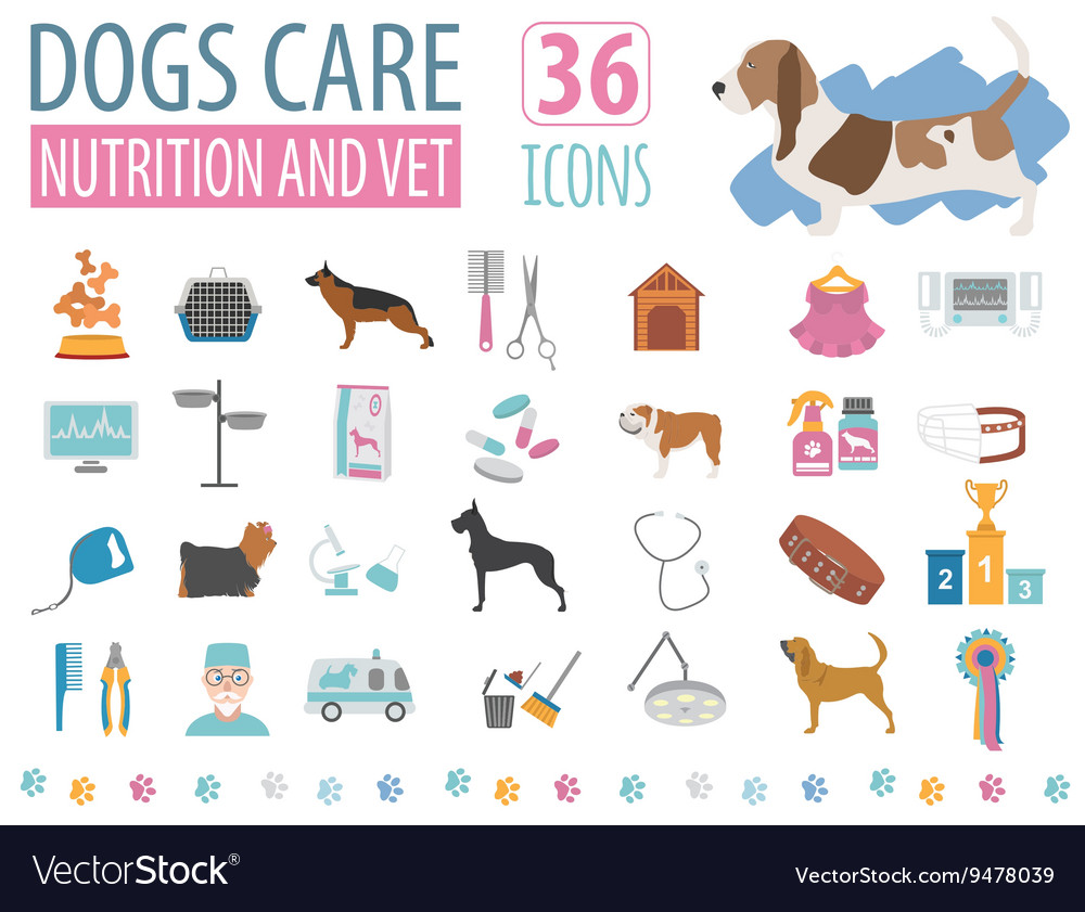 Dog Icon Set Heatlh Care Vet Nutrition Exhibition Vector Image