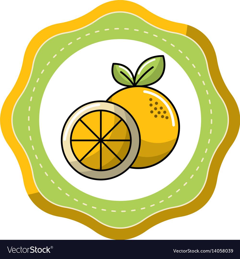 Sticker orange fruit icon stock