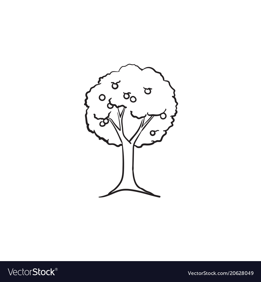 Fruit tree hand drawn sketch icon