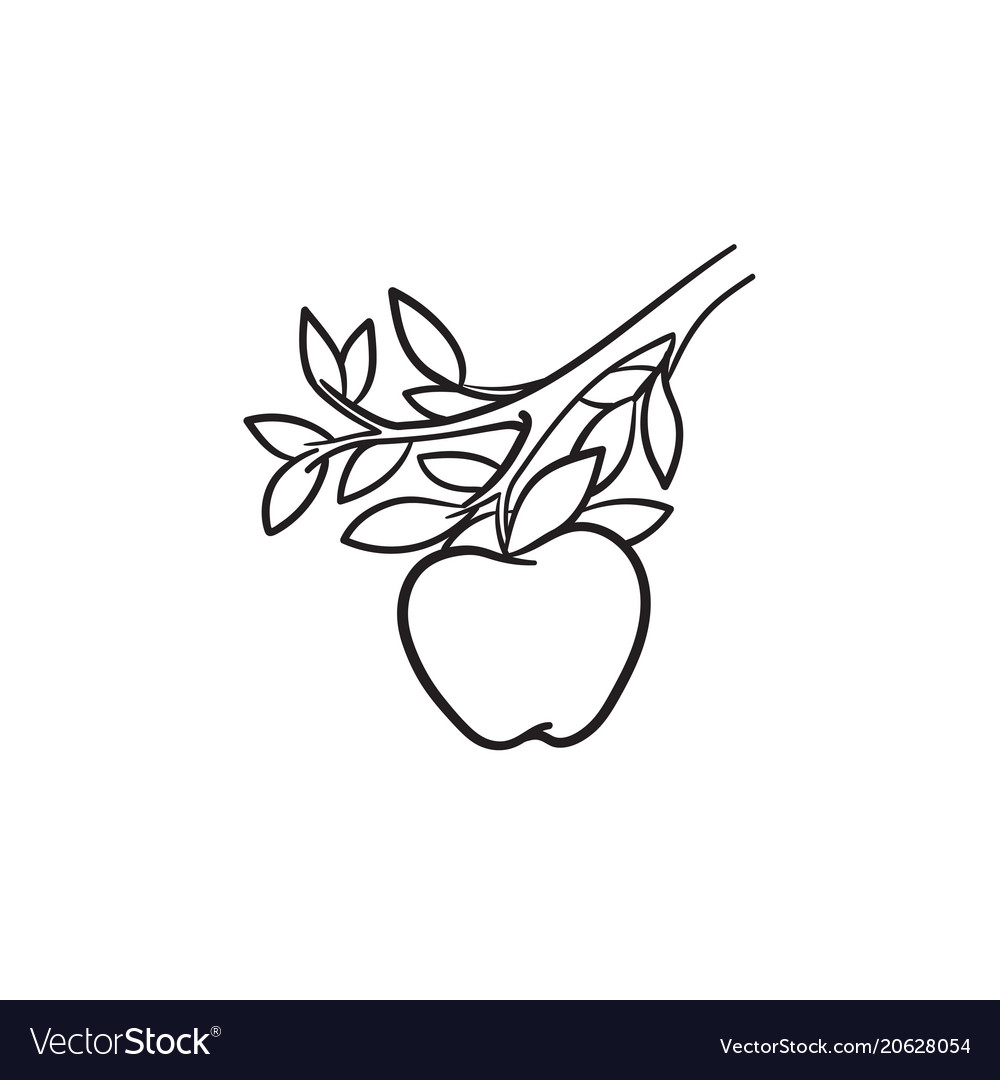 Apple harvest hand drawn sketch icon