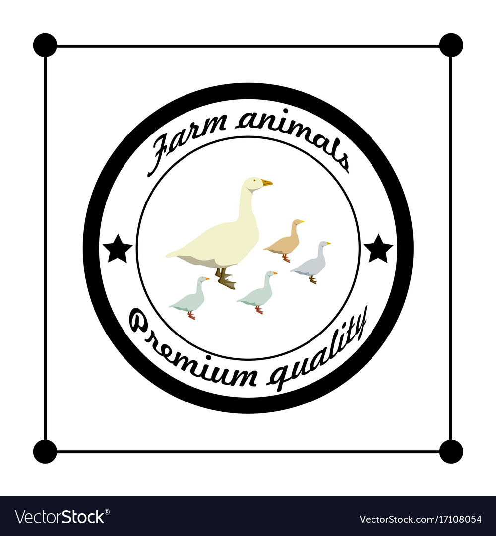 Logos and badges farm animals geese