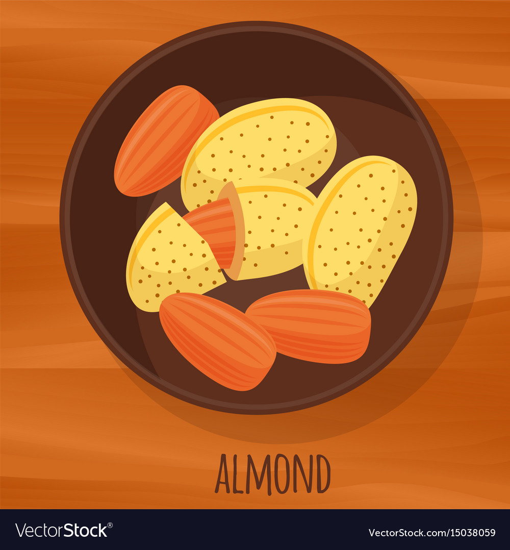 Almond flat design icon