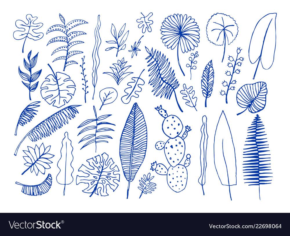 Set of hand-drawn bright tropical plants