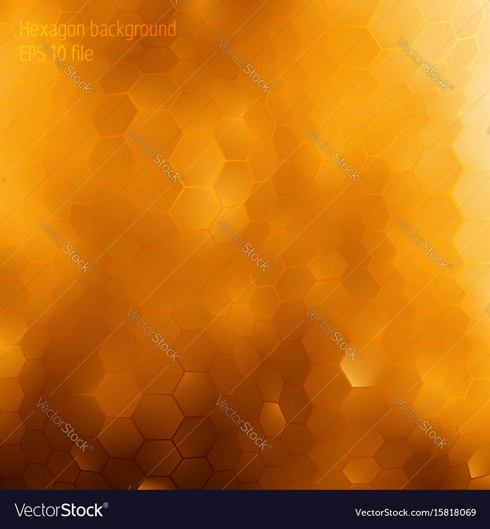 Honey geomertic background with honeycombs forms vector image