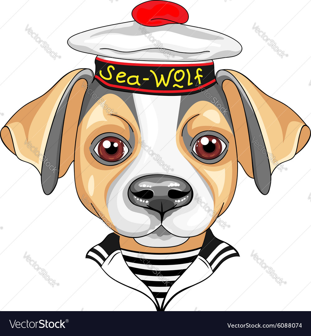 Cartoon dog Jack Russell Terrier sailor vector image