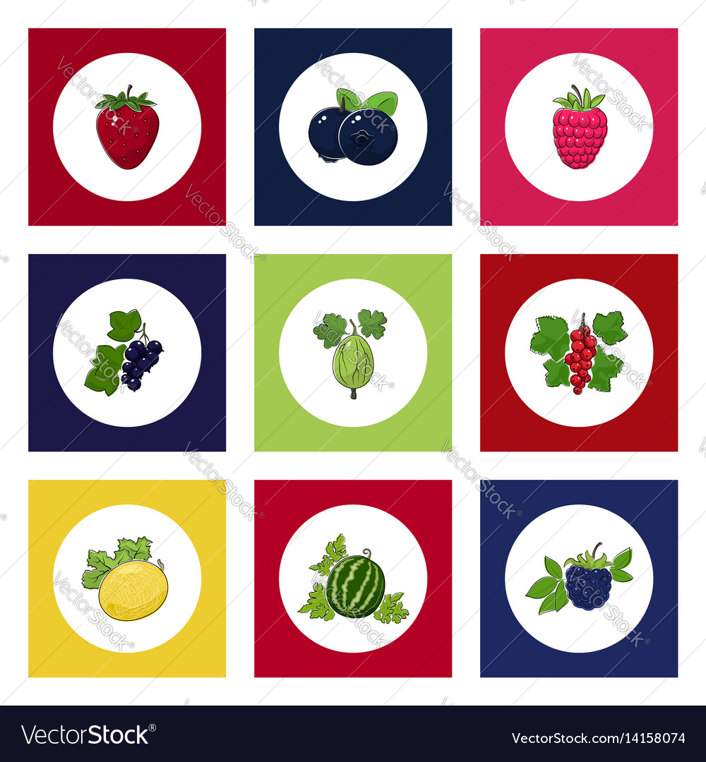 Round berry icons on colorful background vector image