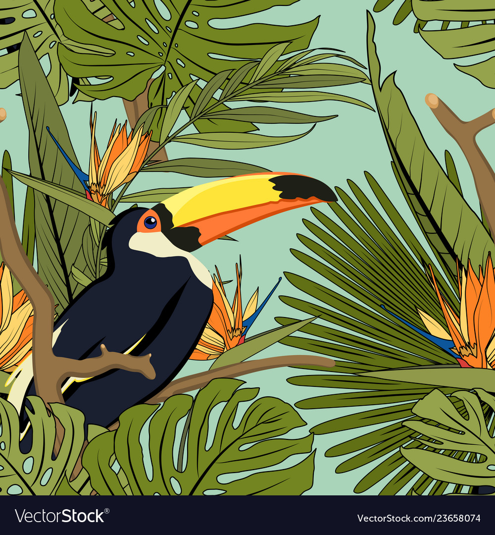 Tropical yellow black toucan exotic palm monstera