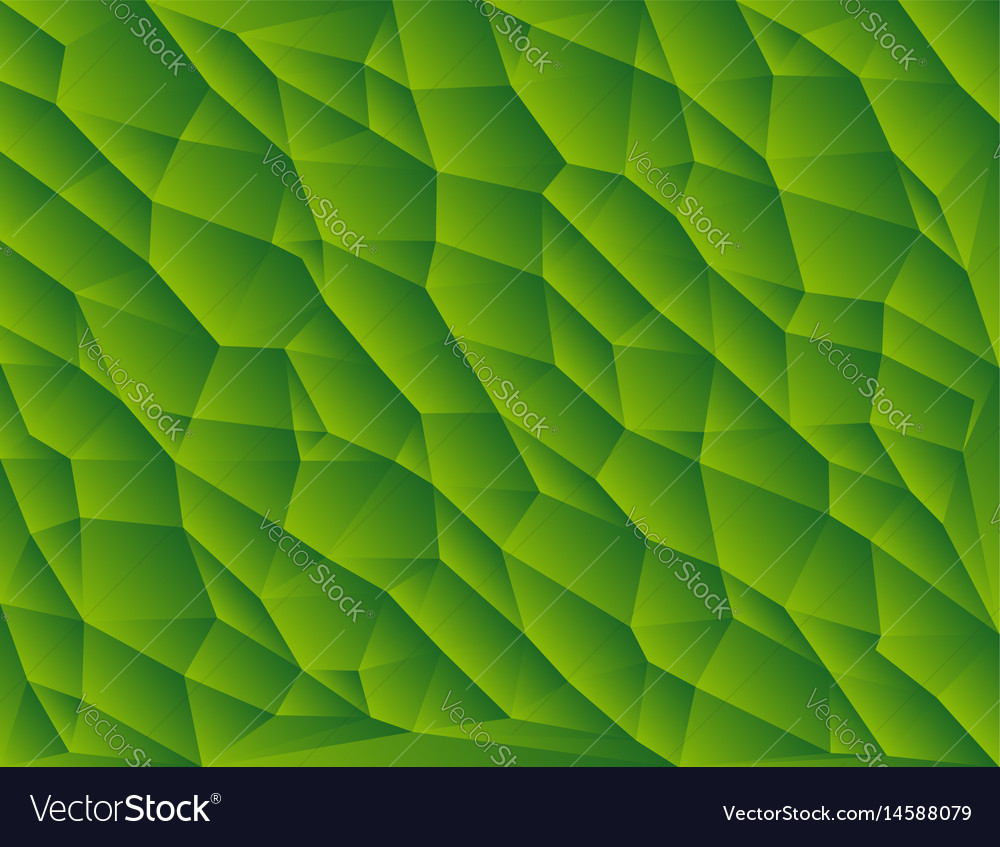 Green polygon abstract triangulated background vector image