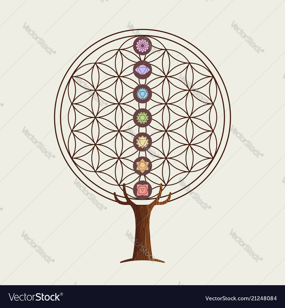 Flower Of Life Concept Tree With Yoga Chakras Vector Image