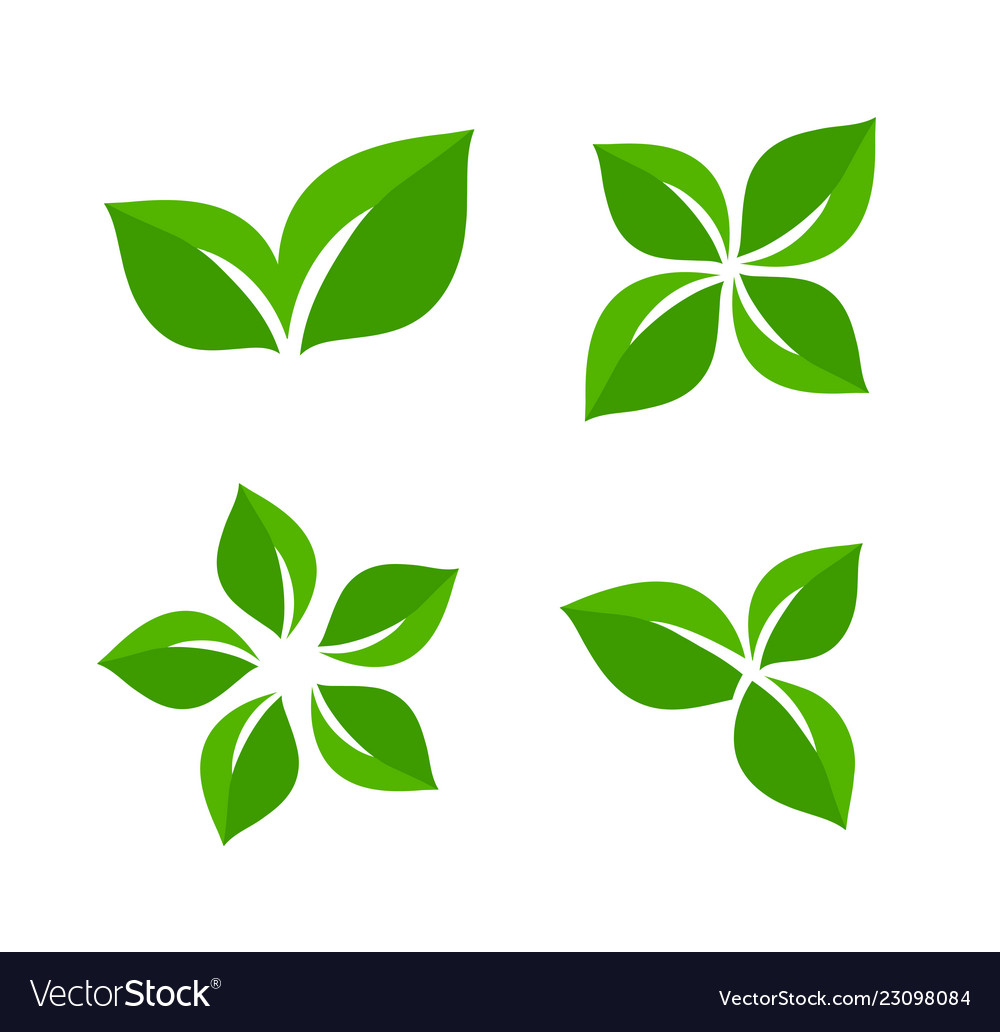Green leaf ecology and organic abstract
