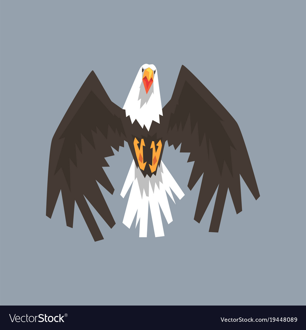 North american bald eagle character flying symbol
