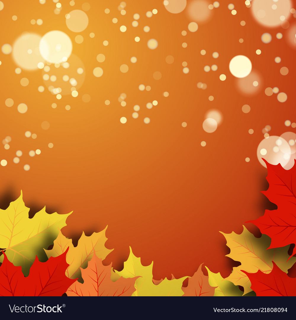 A beautiful autumn background
