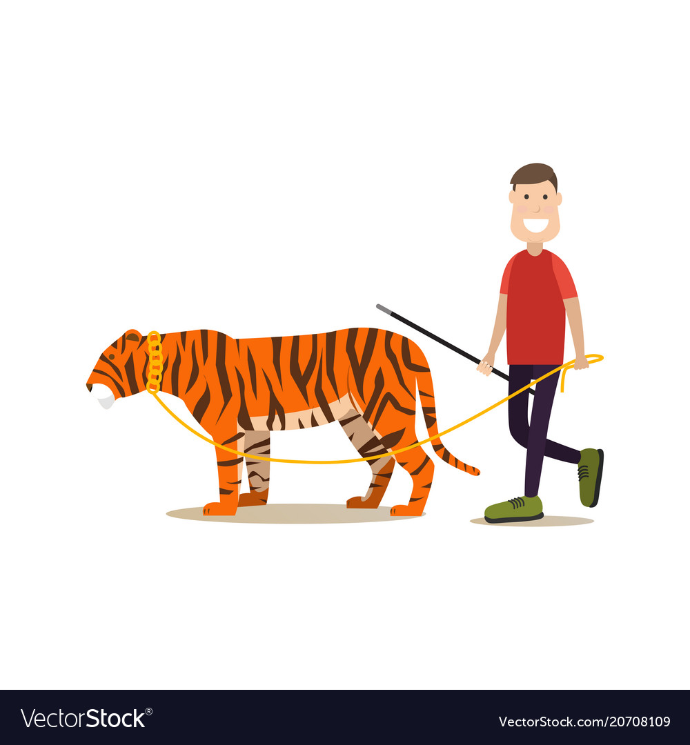 Wild animal tamer male with his tiger flat
