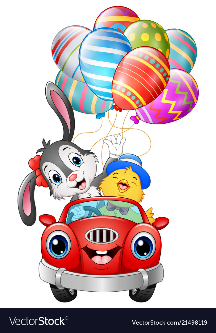 Easter bunny with chicks driving a car carries eas