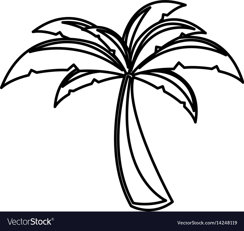 White background with monochrome palm tree