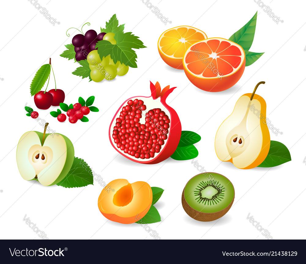 Realistic fruit halves