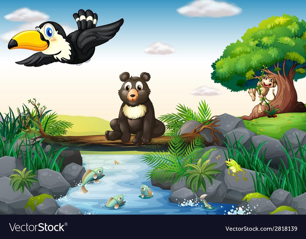 Animals and stream