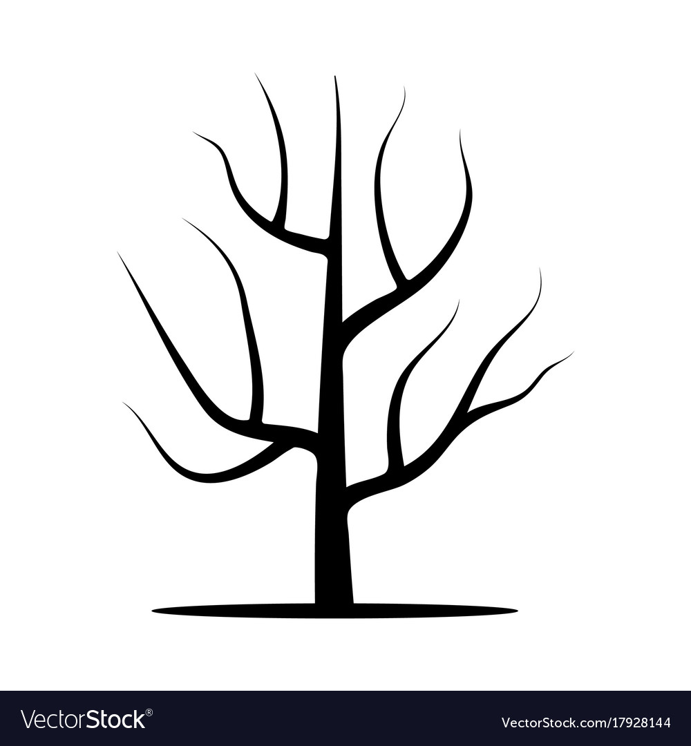 how to draw a tree without leaves