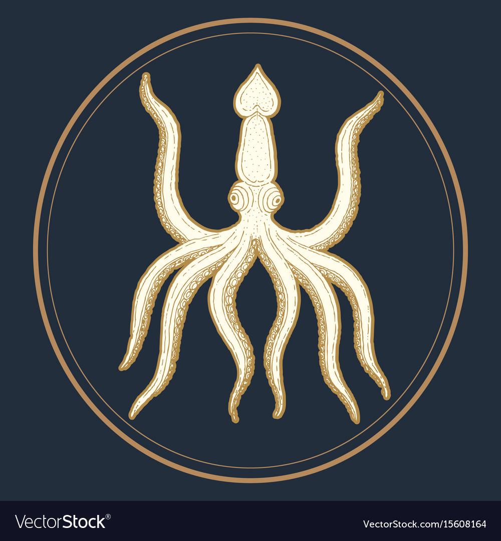 Hand-drawn octopus
