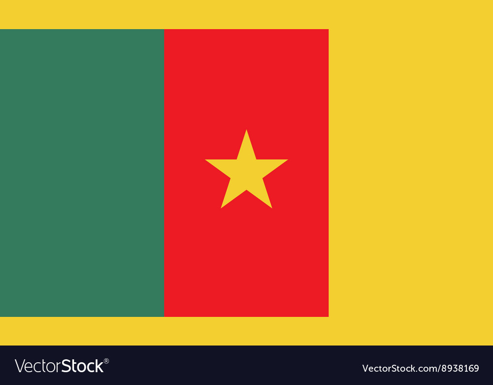 Cameroon flag image vector image