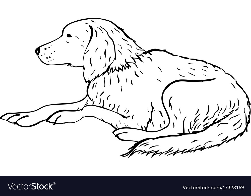 Stylized dog line art artistic animal silhouette vector image