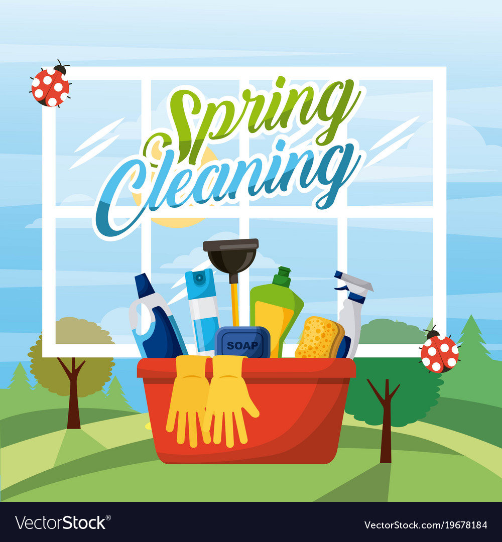 Spring cleaning bucket equipment with window and