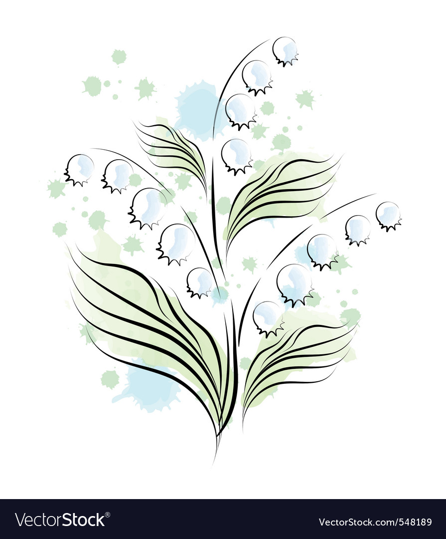 Lily Of The Valley Sketch Royalty Free Vector Image