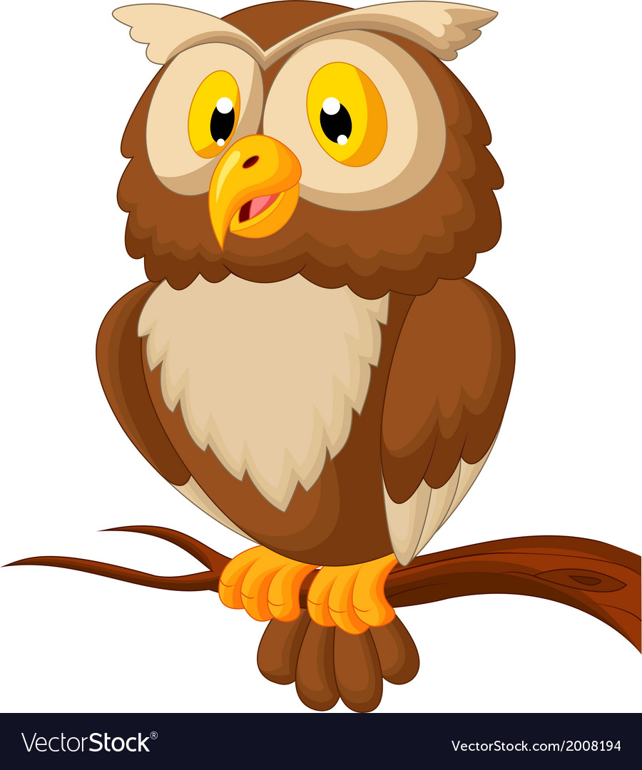 Cute owl cartoon Royalty Free Vector Image - VectorStock