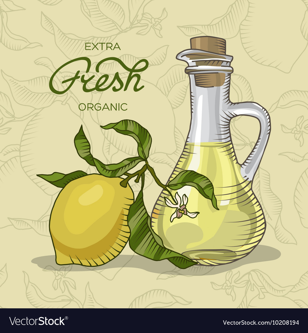 Lemon branch with fruit and carafe of juice vector image