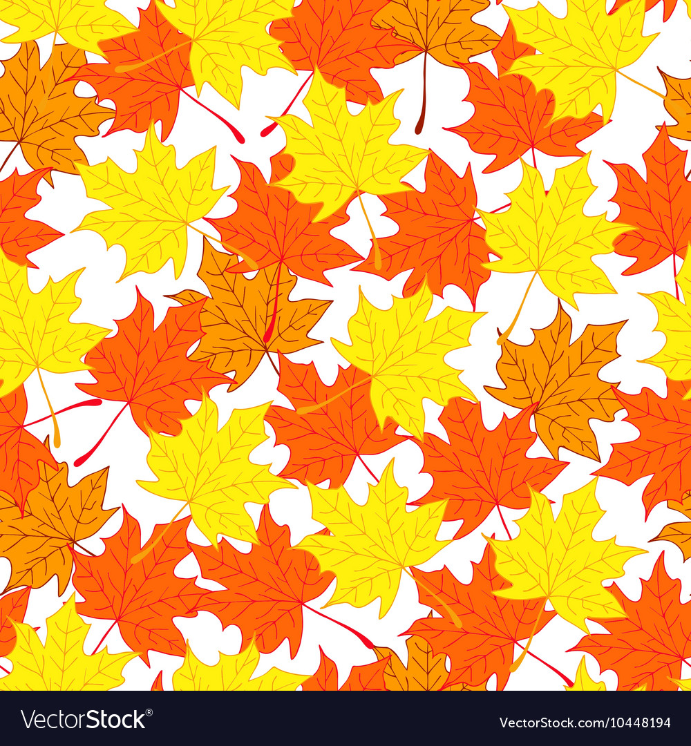 Maple leaves Autumn and bright background