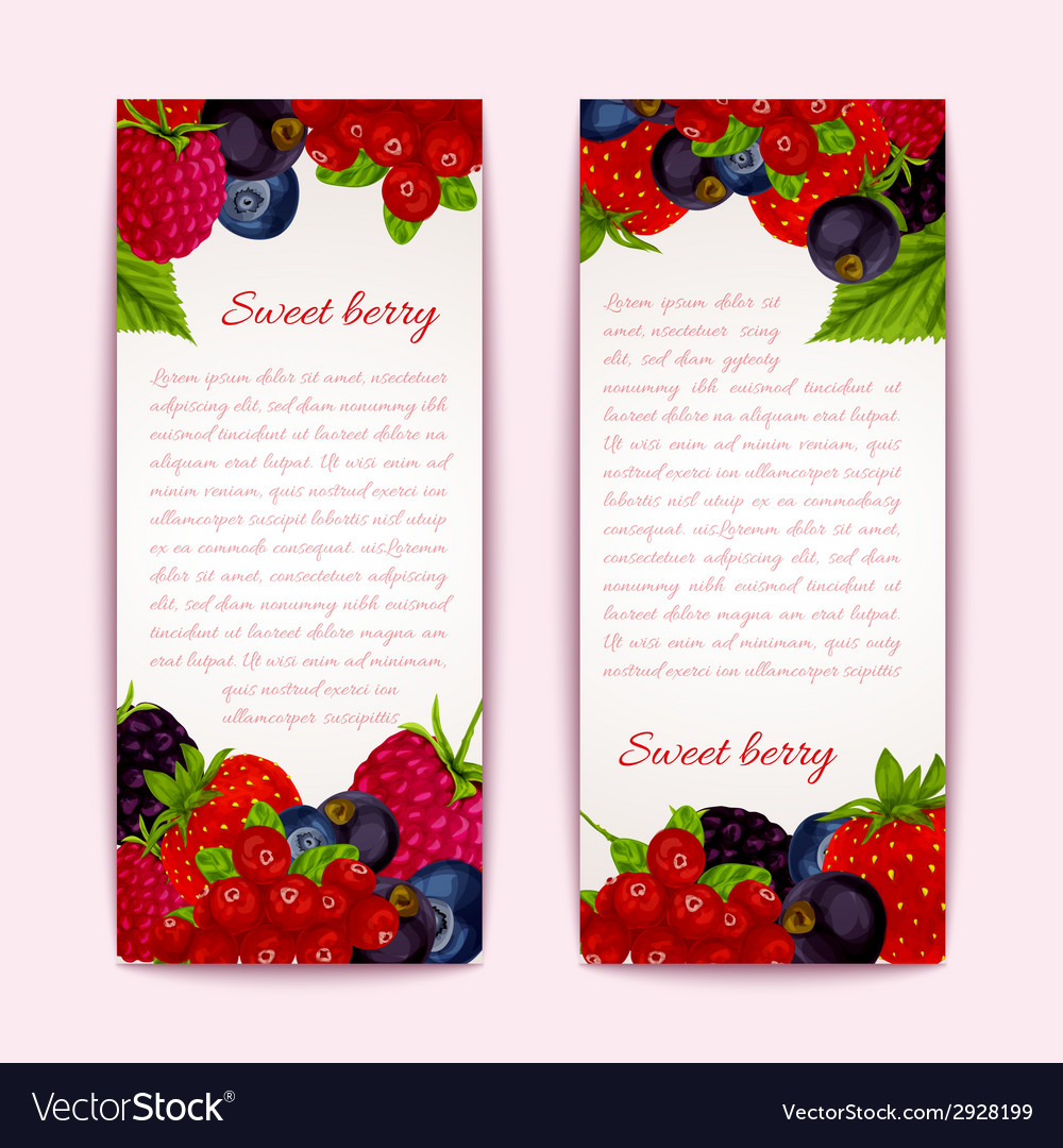 Berries Banners Vertical Vector Image