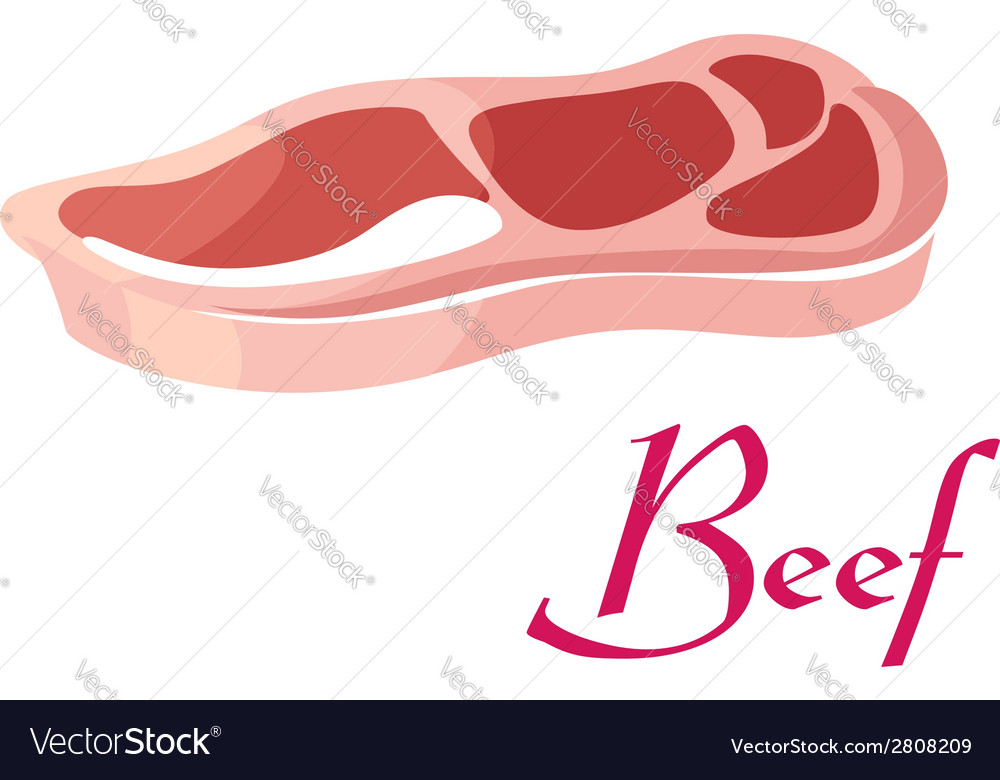 Fresh raw beef meat vector image