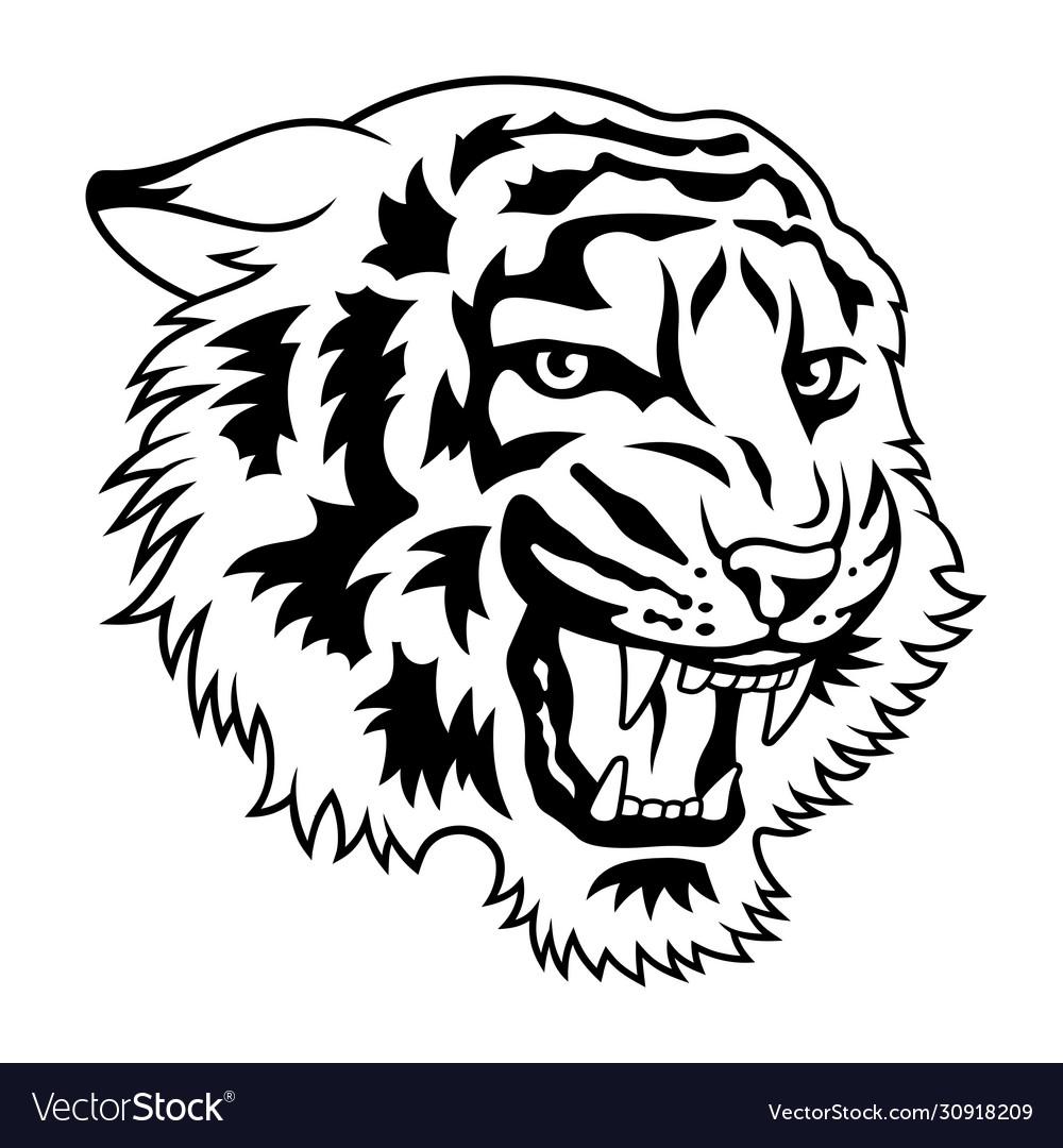 Tiger 021